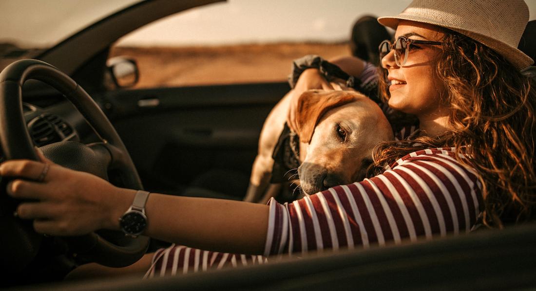 Eine junge Frau fährt an einem sonnigen Tag mit ihrem Hund in einem offenen Leasing-Auto