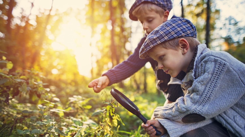 Zwei kleine Jungen inspizieren mit einer Lupe Pflanzen im Wald