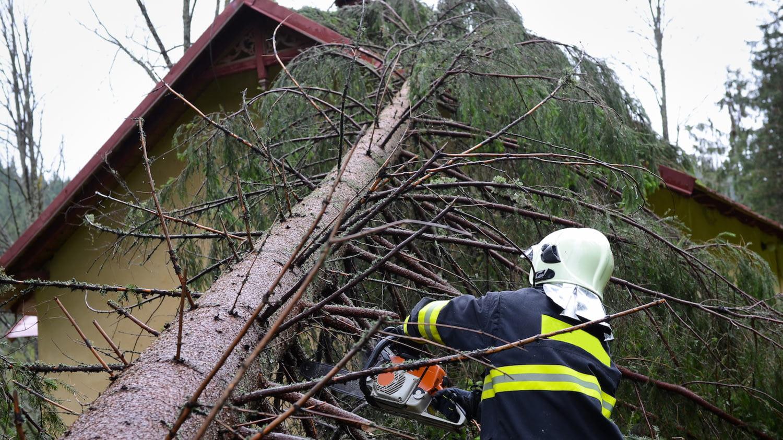 Ein Feuerwehrmann entfernt mit einer Kettensäge einen Baum, der auf ein Haus gestürzt ist.