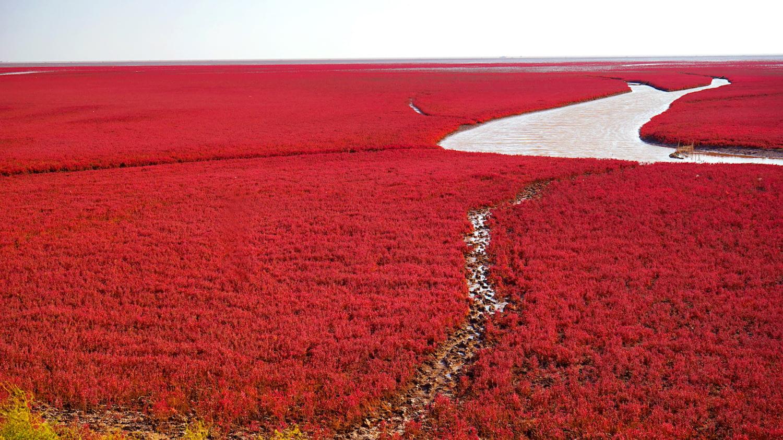 Fluss durchzieht rot gefärbte Landschaft