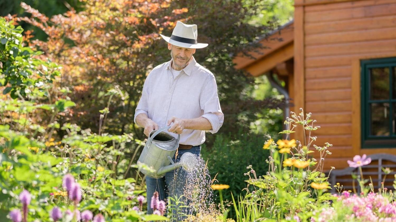 Ein zufrieden aussehender Senior gießt die Pflanzen in einem üppig blühenden Garten