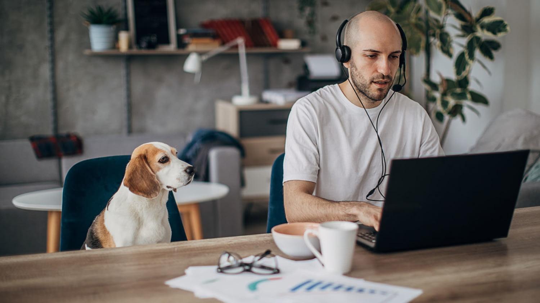 Mann mit Kopfhörern tippt in sein Laptop, neben ihm sitzt sein Hund